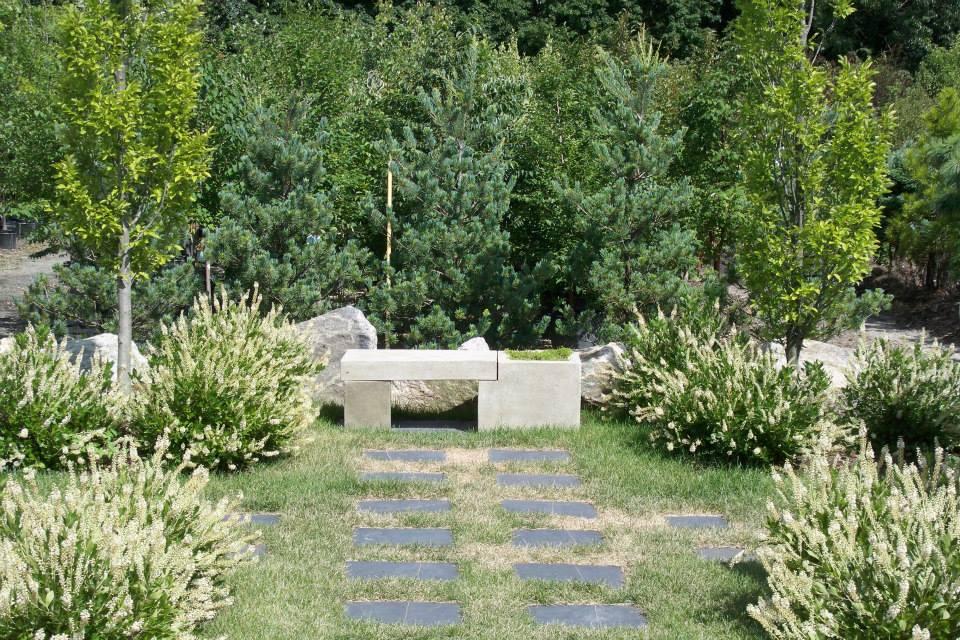 16-shrubs-4